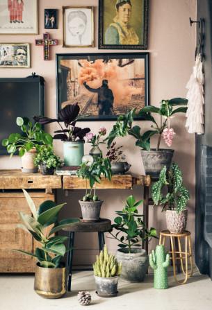Mitt lilla plant gang är lovely!